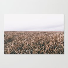 OPEN MOORE Canvas Print