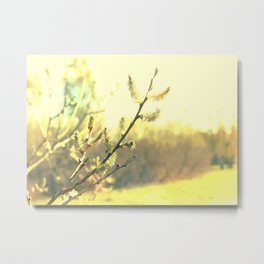 Branch with buds 2 Metal Print