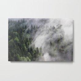 Immersion Metal Print