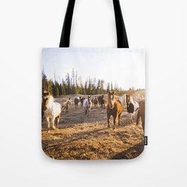 Horses at golden hour Tote Bag