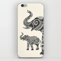 ornate elephant iPhone & iPod Skins featuring Elephant by famenxt
