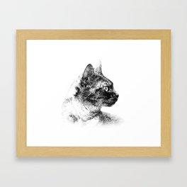 Profile of Stella the Grey (Cat) Framed Art Print