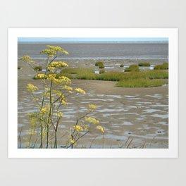 Mudflats and Fennel Art Print