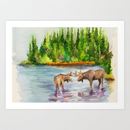 Isle Royale National Park Art Print