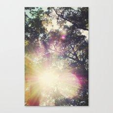 Sun/Sunflare Canvas Print