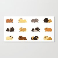 pigs Canvas Prints featuring Guinea pigs by stephasocks