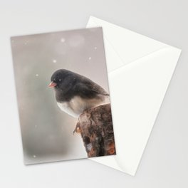 Winter Birds - Junco Stationery Cards