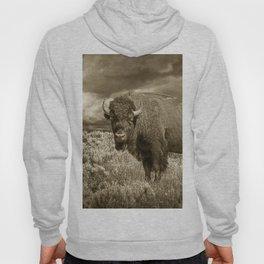 American Buffalo in Sepia Tone Hoody
