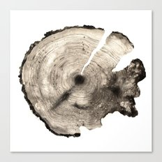 cross-section II Canvas Print