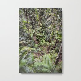 Rainforest Jungle Metal Print