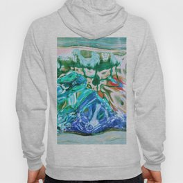 427 - Abstract glass design Hoody