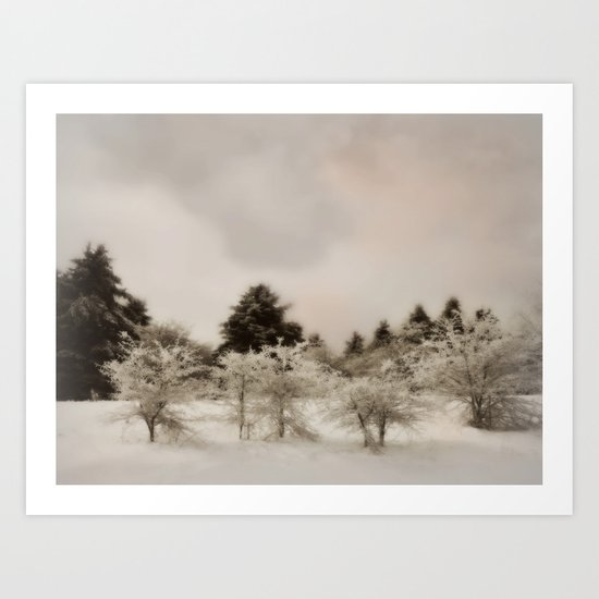 Perking up a snowy day ~ Winter forest  Art Print