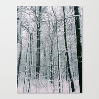 blankets Canvas Prints featuring Blankets of Snow by Warren Silveira + Stay Rustic