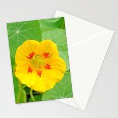 Yellow Nasturtium Stationery Cards