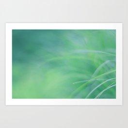 Tropical NO3 Art Print