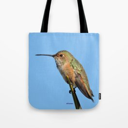 Grasping the Point Tote Bag