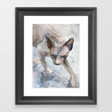CAT #5 Framed Art Print
