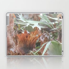 Ethereal Elkhorn Laptop & iPad Skin