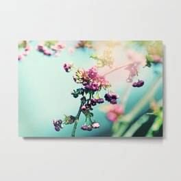 Romantic spring Flowers Metal Print