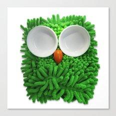 Hootie the House Owl! Canvas Print