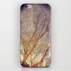 Galaxy + Nature Reflection iPhone & iPod Skin