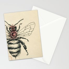 Cabinet of Curiosities No.6 Stationery Cards