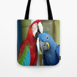 Photo of red and blue macaws Tote Bag