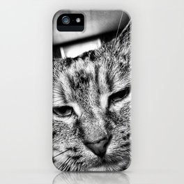 House Cat, Athens, 2017 iPhone Case