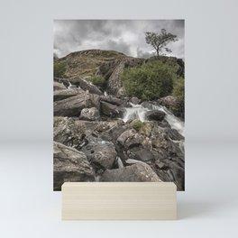 Tree in Snowdonia Mini Art Print