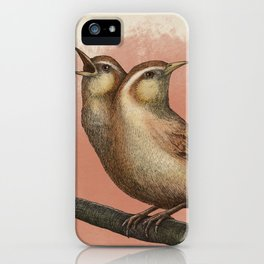Gossiping House Wren iPhone Case