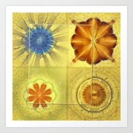 Didactic Rainbow Flower  ID:16165-120332-39891 Art Print