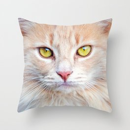 MEET DIXIE - CAT PHOTOGRAPH Throw Pillow