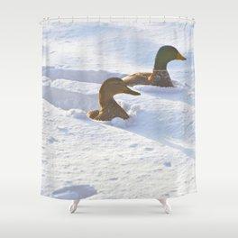 Ducks Swimming in Snow Shower Curtain