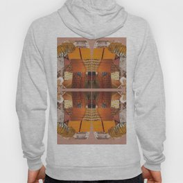 She's a tiger - a modern collage in orange Hoody