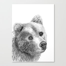 Shaggy Grizzly Bear Canvas Print