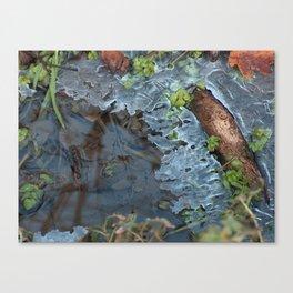 Ice 1 Canvas Print