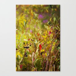 Fall Field Canvas Print