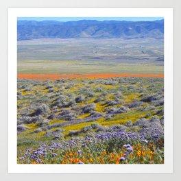 Flowering Fields Art Print