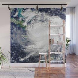 Gulf Coast Hurricane Wall Mural