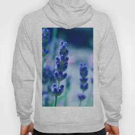A Touch of blue - Lavender #1 Hoody