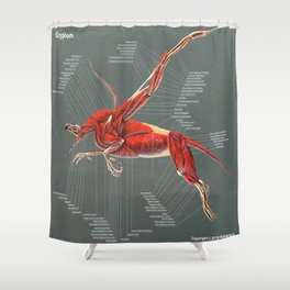 Gryphon Muscle Anatomy Shower Curtain