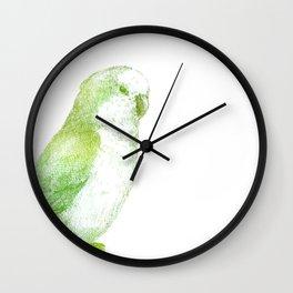Monk parakeet Wall Clock