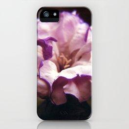 Antique rose iPhone Case