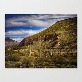 Saguaros in the Desert Canvas Print