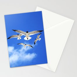 Beach Birds Stationery Cards