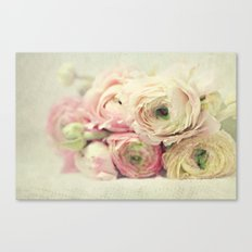 the palest pink Canvas Print