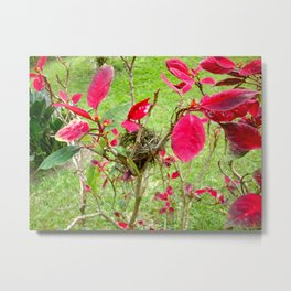 Mini Bird's Nest Metal Print