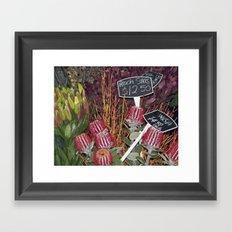 Banksia Framed Art Print