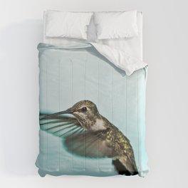 hummingbird no.1 Comforters