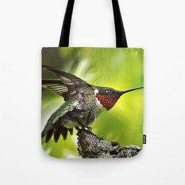 Hummingbird Dominance Tote Bag